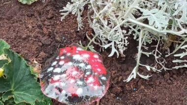 Enamelled Mushroom Garden Decor